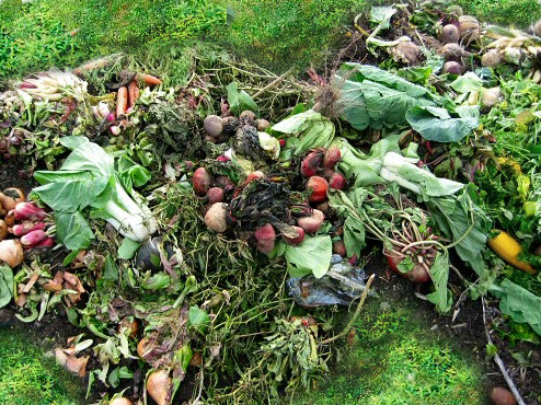Grass Clippings and Vegetable Scraps